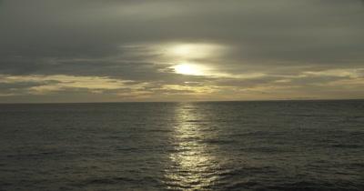 Tilt down from horizon to ocean. Birds flying. sun reflecting off water