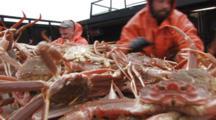 Crab Fishing Bering Sea - Close Up Fishermen Dump Pile Of Crab Onto Table, Icy Deck