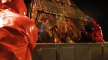 Crab Fishing Bering Sea - Fishermen Dump Crab Then Swing Table, Icy Deck