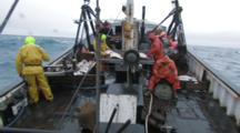 Overlook Men On Fishing Boat Handle Lines, Gear And Halibut Catch, Longlining For Halibut And Black Cod Alaska