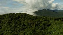 Dense Rainforest And Clouds