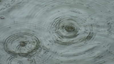Rain Drops Create Rings On Water Surface