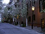 Boston Street Scene With Street Lamp