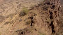 Aerial Over Sonoran Desert, Mexico