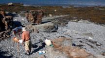 Man Paints Landscapes On Maine Shore