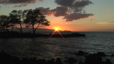 Sunset On Rugged Coast Silhouettes Trees