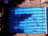 Aerial Of Swimming Pool