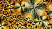 Time Lapse Crystal Formation