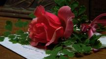 Pink Rose On Note Comes To Life, On Top Of Desk
