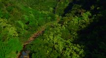 Aerial Through Jungle Surrounded By Green Lush Mountains And Trees; Kauai/Hawaii