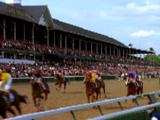 Horses Race At Kentucky Derby, Cross Finish Line