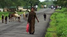 Woman Passes Goats Walking On Road