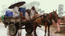 Men In Horse Cart In Rain