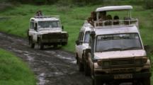 People In Safari Vehicles Watch Wildlife