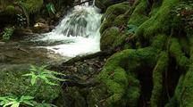 Waterfall And Creek, Big Sur
