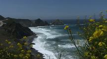 Big Sur Ocean Stock Footage