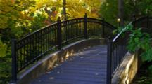 Bridge With Trees In Fall Colors