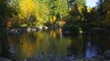 Duck Pond With Trees In Fall Colors