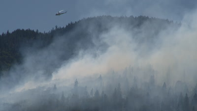 Helicopter Flies Over Forest Fire Carrying Water Bucket