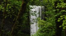 Waterfall Behind Trees In Temperate Forest