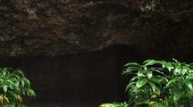 Rain At Lava Cave, Hawaii