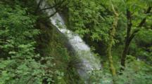 Waterfall In Lush Forest Of Columbia River Gorge