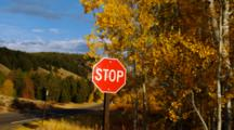 Stop Sign And Autumn Trees With Gold Leaves