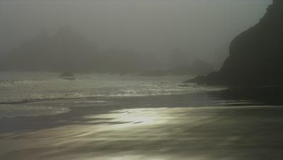 Fog On Rocky Oregon Shore