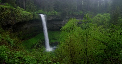 Edited Compilation: Waterfalls And Landscapes Of Temperate Rainforest
