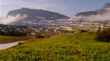 Mountain Scenic With Glacier Lilies At Glacier National Park, Possibly Near Logan Pass