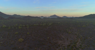 Sunrise over the Organ Pipe Cactus National Monument