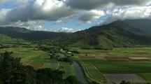 Agricultural Fields, Hawaii