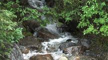 Rapids In Banff National Park, Alberta, Canada