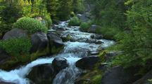 Creek With Rapids, Mt. Rainier