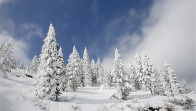 Winter Time Lapse Stock Footage
