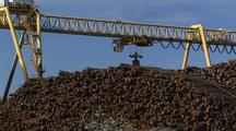 Large Crane Moves Logs At Lumber Company