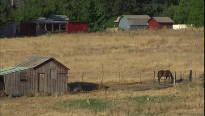 Stock Footage from the Countryside