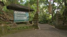 Monkeys Play Near Entrance Sign To Monkey Forest, Bali, Indonesia, Tourists Come Through