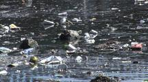 Ducks Swim Among Trash Floating In Los Angeles River System