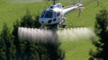 Aerial Helicopter Spraying Te Puke Kiwifruit Fields, New Zealand