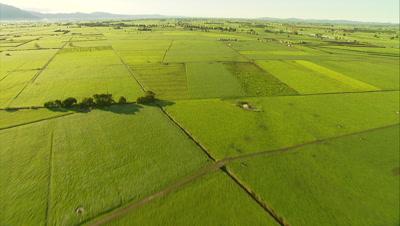 Aerial Of Farmland, Green Fields