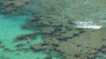 Snorkelers At Hanauma Bay, Marine Life Conservation Area, Honolulu, Hawaii