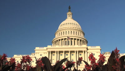 US Capitol Building Royalty Free Stock Footage
