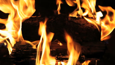 Campfire Burning Strong At Night