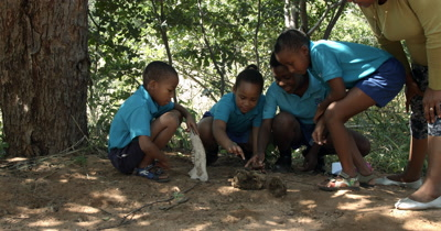 A teacher and four Primary School kids discuss their thoughts on an animal jaw  bone they have discovered and the two elephant dung balls on the sand