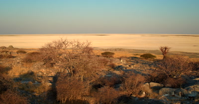 Pan at sunset across Lekubu Island with majestic Baobabs,Adansonia sp trees growing out of rocks