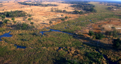 Aerial shot over the Okavango Delta
