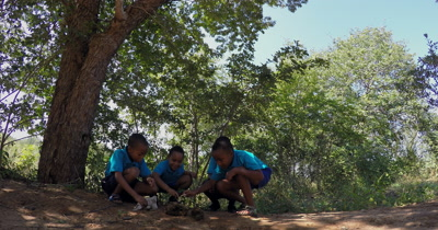Four Primary School kids discussing their thoughts on an animal bone they have discovered