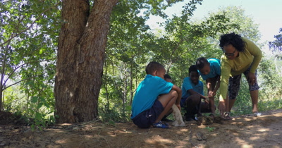 Four Primary School kids and their teacher discussing their thoughts on an elephant dung they have discovered