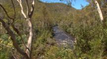 River Thru Vegetation 01